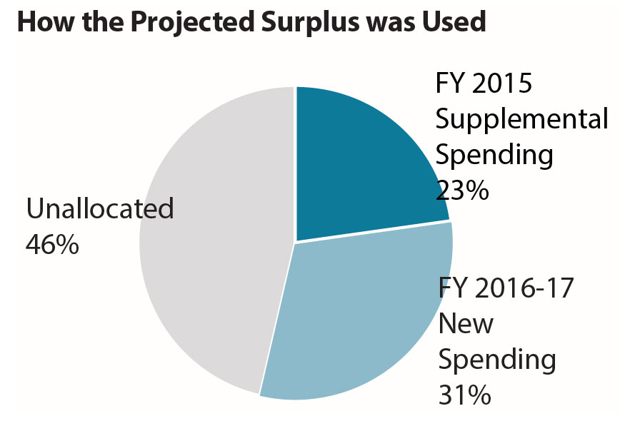 Pie chart How the projected surplus was used
